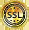 100% SSL verschlüsselt
